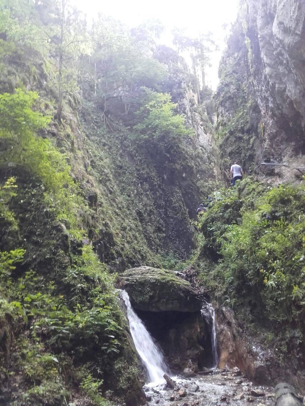 munte munte Peste râu și prin pădure am urcat pe munte fără să avem habar cum se face asta 16651497 1336648106393243 74661991 o
