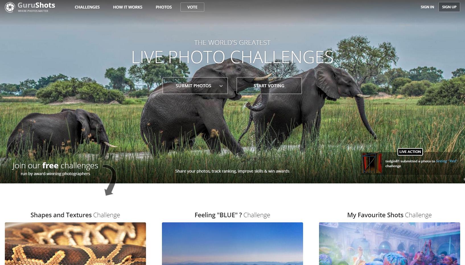GuruShots GuruShots GuruShots, platforma cu challenge-uri pentru fotografi din toată lumea gurushots screenshot