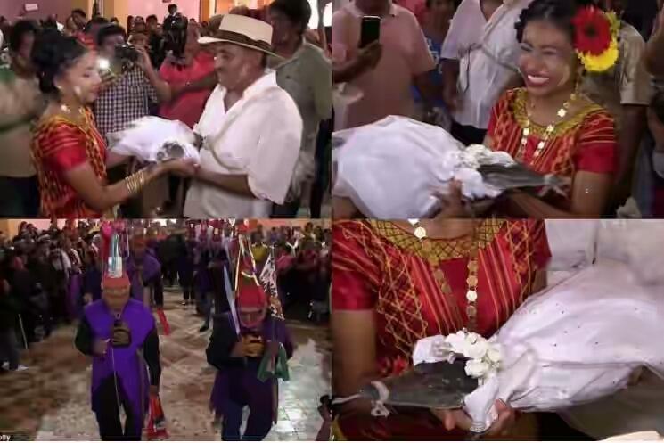 Un primar s-a căsătorit cu un crocodil Un primar s-a căsătorit cu un crocodil Primar si crocodil