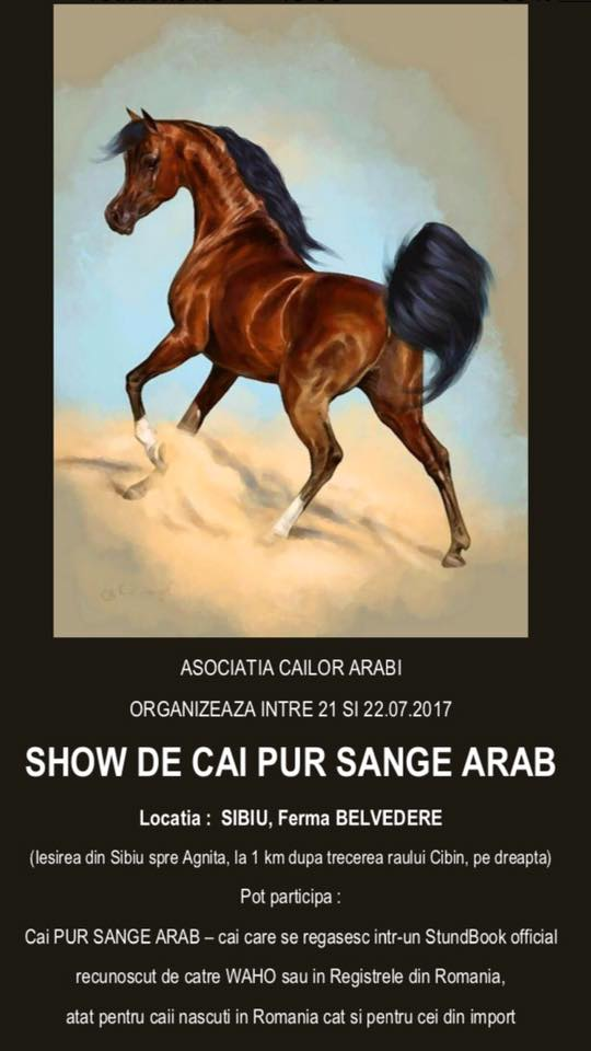 show de cai pur sânge arab la sibiu cu intrarea liberă Show de cai pur sânge arab la Sibiu, cu intrarea liberă Show cai pur sange arab