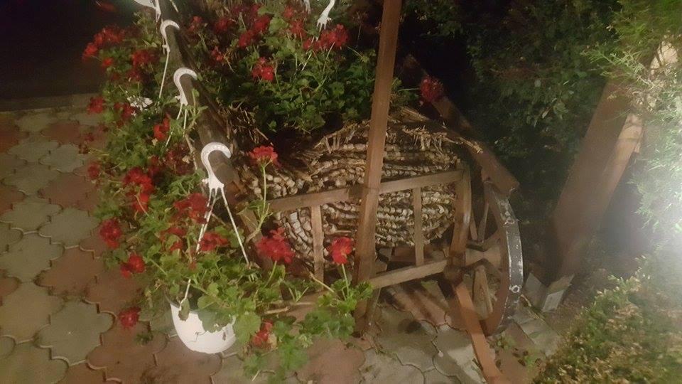Casa Oprescu sau tradiția la ea acasă Caruta cu flori
