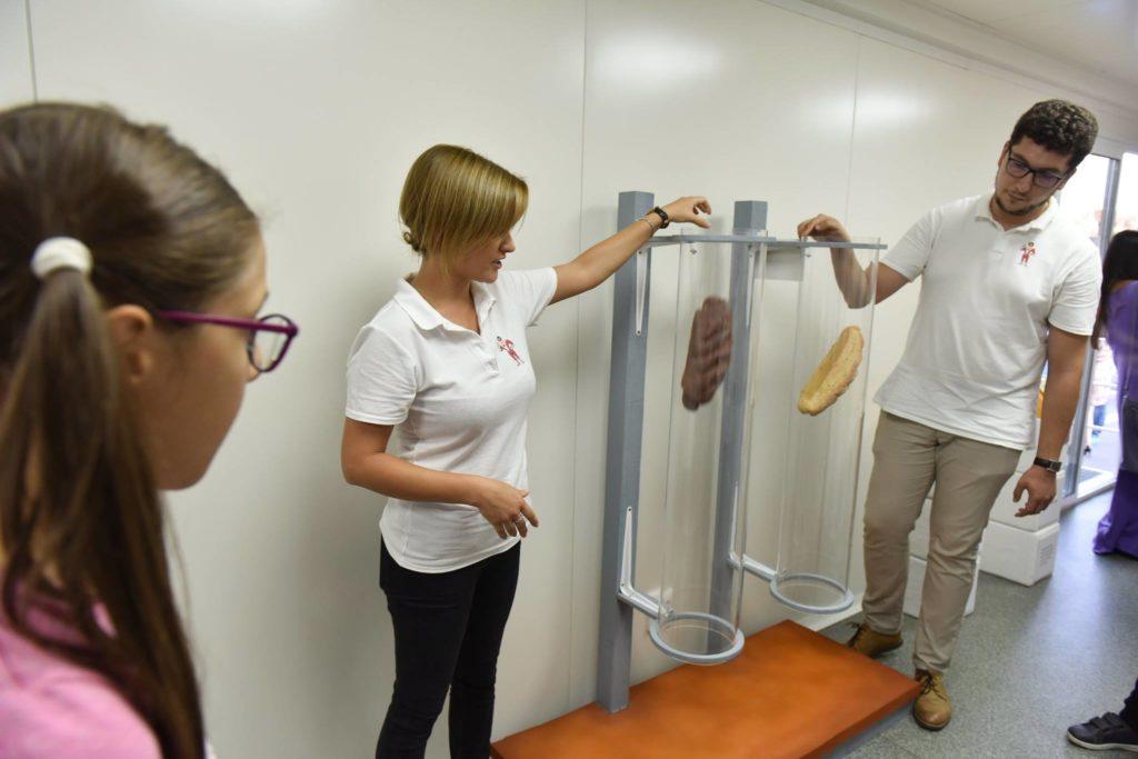Akademia Kinderland și-a deschis porțile pentru copii Tuburile transparente