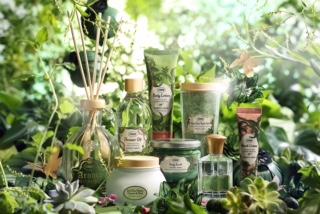 ELIMINĂ TOXINELE DIN CORP PENTRU A ARĂTA SUPERB ÎN VARA 2021 cu NOUA COLECȚIE BLISSFUL GREEN Blissful Green  collection compo 1 2